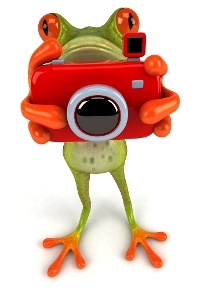 shutterstock_36612625_frog_photo_camera